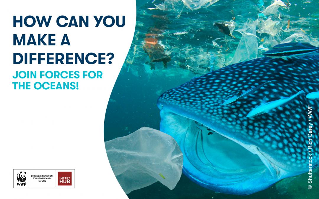 To Impact Hub Athens και η WWF ενώνουν τις δυνάμεις τους για τους Ωκεανούς